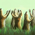 Praising Prairie Dogs by Anthony Falbo