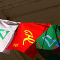 Prayer Flags by Angela Wright