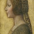 Profile Of A Young Fiancee by Leonardo Da Vinci