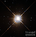 Proxima Centauri by Science Source