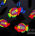 Psychedelic Flying Fish by Kaye Menner