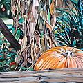 Pumpkin by Anthony Mezza