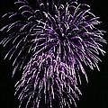 Purple Fire  by Yumi Johnson