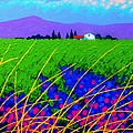 Purple Hills Print by John  Nolan