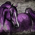 purple one Print by Angel  Tarantella