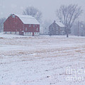 Quakertown Farm On Snowy Day by Anna Lisa Yoder
