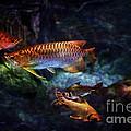 Rainbow Exotic Fish