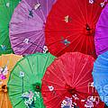 Rainbow Of Parasols   by Alexandra Jordankova