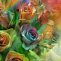 Rainbow Roses by Carol Cavalaris