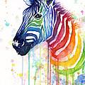Rainbow Zebra - Ode to Fruit Stripes Print by Olga Shvartsur