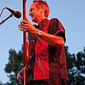Randy Reis On Bass - The Fabulous Kingpins by David Patterson
