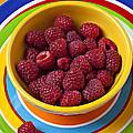 Raspberries In Yellow Bowl On Plate by Garry Gay
