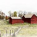 Red Barn by Marcia Colelli