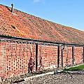 Red Brick Bard by Tom Gowanlock
