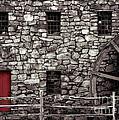Red Door by Jayne Carney