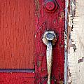 Red Door by Peter Tellone