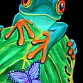Red-eyed Tree Frog And Butterfly by Nick Gustafson