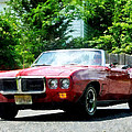 Red Firebird Convertible by Susan Savad