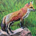 Red Fox by Lorrie T Dunks