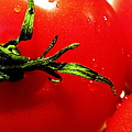 Red Hot Tomato by Karen Wiles