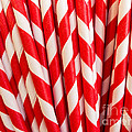 Red Paper Straws by Edward Fielding