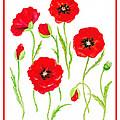 Red Poppies by Irina Sztukowski