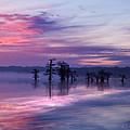 Reelfoot Lake Sunrise by J Larry Walker