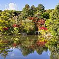 Reflection In Kyoyochi Pond In Autumn Ryoan-ji Kyoto by Colin and Linda McKie