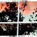 Reflections In An Old Window Print by Will Borden