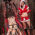 Reindeer Slay by Steven Walker