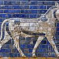 Relief From Ishtar Gate In Babylon by Robert Preston