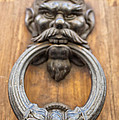 Renaissance Door Knocker by Melany Sarafis