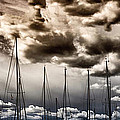 Resting Sailboats by Stelios Kleanthous