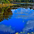 Ripples On Fly Pond - Old Forge New York by David Patterson