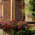 Riquewihr Window by Brian Jannsen