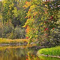 River In Fall by Rhonda Humphreys