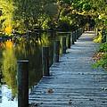 River Walk In Traverse City Michigan by Terri Gostola