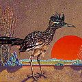 Road Runner At Sundown by Bob Coonts