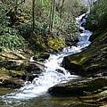 Roaring Fork Falls - Spring 2013 by Joel Deutsch