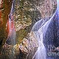 Rocks And Water by Elena Elisseeva