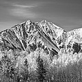 Rocky Mountain Autumn High In Black And White by James BO  Insogna