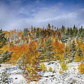 Rocky Mountain Autumn Storm by James BO  Insogna