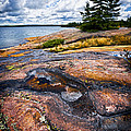 Rocky Shore Of Georgian Bay by Elena Elisseeva