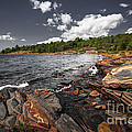 Rocky Shore Of Georgian Bay I by Elena Elisseeva