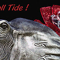 Roll Tide - 14 Time National Champions by Kathy Clark