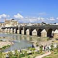 Roman Bridge In Cordoba by Artur Bogacki