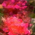 Rose 198 by Pamela Cooper