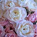 Roses On The Veranda by Carol Groenen