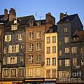 Row Of Houses. Honfleur Harbour. Calvados. Normandy. France. Europe by Bernard Jaubert