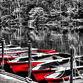 Row of Red Rowing Boats Print by Kaye Menner